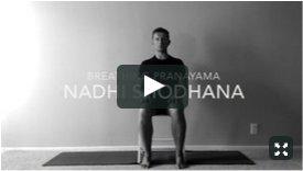 Y4M Nadhi Shodhana Pranayama
