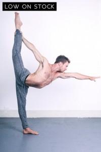 Dharma Yoga Pants